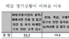 """구제역ㆍAIㆍ한파…소상공인 """"설특수 실종"""" 비명"""