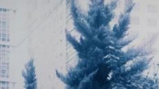마음을 사로잡는 부드러운 블루, 신수혁의 Blue Note