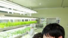 농사도 스마트폰으로?...올레 스마트팜 앱 출시