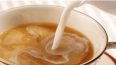 차에 우유 넣으면, 다이어트 효과 없다?
