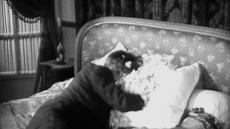 [이영란기자의 미술산책] 필름의 흥미로운 재편집..'피처링 시네마'展