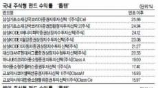 국내-대형株-성장형 펀드 '넘버원'