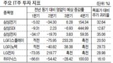 IT株 '애플효과'로 달콤한 상승?