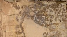 연기 행정중심복합도시 예정지서 백제 수장층 집단 주거 유적 발굴