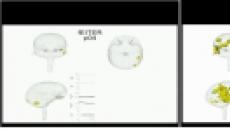 뇌의 무의식 진입단계 '3D 영상' 최초 공개