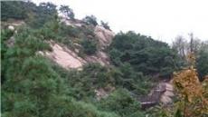 서울에서 삼림욕할 수 있는 11곳?