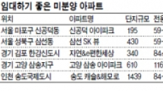 임대사업자 수도권 미분양 '눈독'