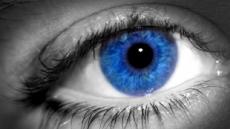 """""""파란 눈 줄게 갈색 눈 다오"""" 美의료시술 논란"""