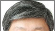 '놀토'와 사교육 - 남 이(농협안성교육원 교수)