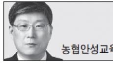 <헤럴드 포럼> '놀토'와 사교육