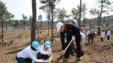 올봄에 나무 4000만 그루 태어난다