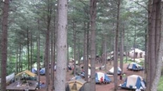 산림청 추천, 캠핑하기 좋은 국립자연휴양림 6선
