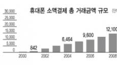 """""""직불결제 도입 호재…내년 40% 성장"""""""