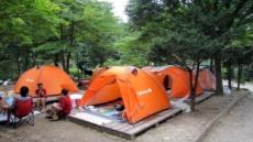 캠핑 '낯선 잠자리'…척추에도 애정을…