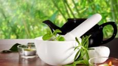 백차(white tea)가 체중감량에 좋은 7가지 이유