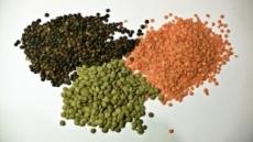 [리얼푸드 뉴스]이효리의 '렌틸콩'…최근 한달 판매 5100배 늘어