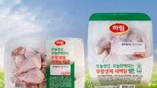 안전 강조한 식품업계…'당일마케팅'이 뜬다