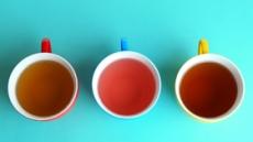 당신이 茶와 친해져야하는 이유
