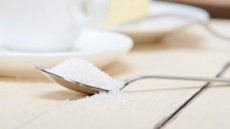 위풍糖糖…단맛, 자연을 더하다