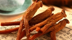 한국인이 가장 많이 찾은 건강기능식품은?