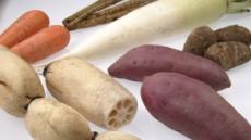 우엉·칡·더덕·연근…금연하는 당신 몸의 毒 빼주는 뿌리채소