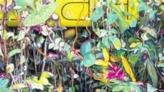 [지상갤러리] 갤러리현대, 김성호 개인전 'Mirage'