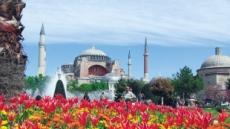 튤립의 고향 이스탄불 4월 3000만송이 꽃잔치