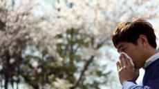 [봄 올때 질환도 온다 ①]  3~4월 알레르기성 비염 기승, 감기와 구별하세요