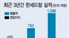 모그룹 살리는 '효자' 한세드림