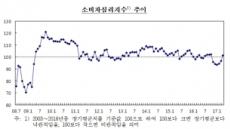 """""""김영란·최순실 가고, 새정부 온다""""…소비심리 반년만에 '정상'회복"""