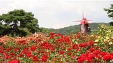 서울대공원 '백만송이 장미'의 초대