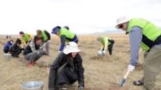 수원시, 몽골 사막에 '희망의 나무' 1만 그루 식재