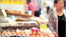 종자닭 절반 폐사…계란값 연말까지 금값