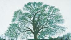 영겁의 세월 마을수호…神木 '서낭신'을 보다