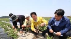 농협, 최악의 봄 가뭄 극복에 재해대책 무이자자금 3000억원 등 총지원