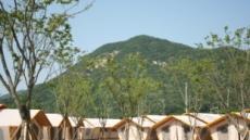 충남 파크오브드림, 공주 동학사 근처에 초대형 글램핑장 오픈