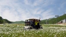 '산 위에서 부는 바람' 강원랜드, 사계절 생태관광 운영