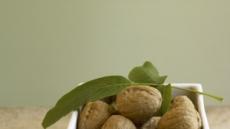 호두 등에 포함된 '다가불포화지방산'  식욕 호르몬에 영향