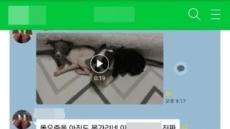 """""""10만원짜리였으면 죽였다"""" 강아지 학대 영상 논란"""