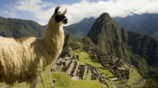 '남미에서 가장 멋진 포토존', 마추픽추