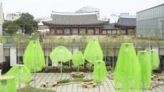 미술관 마당 점령한 형광초록 나무…이건 뭐지?