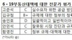 """[6.19 대책 한 달③]전문가 평가 'C학점'…""""뭐가 달라졌나?"""""""