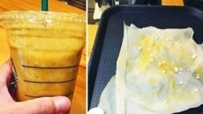 '플라스틱 이물질' 뭇매 맞은 스타벅스, 이번엔 위생관리 '도마 위'