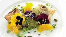 눈·입이 즐거운 '식용 꽃'…유럽 식품트렌드 부상