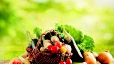 '자연식·식물성·소식' 후손들 미래 바꾼다