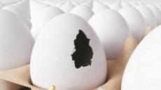 [살충제 계란 쇼크] 국내 증시서 닭고기ㆍ음식료주 '털썩'