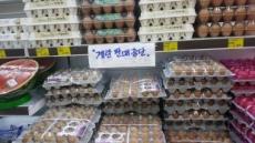 [살충제 계란 쇼크 ④] 출하된 물량만 통과하면 끝?