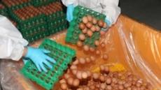 [살충제 계란 쇼크] 부실인증이 부른 예고된 먹거리 공포…10중 9가 친환경 농장이라니