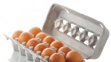 [살충제 달걀에 떠는 식탁 ②] 달걀 씻어 보관하면 안전할까요?