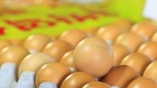"""살충제 계란 없다더니…부산ㆍ제주, """"젤란ㆍ15연암 반품하라"""" 긴급재난문자"""